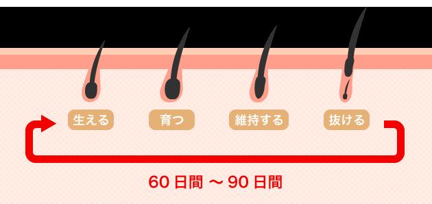 ヘアサイクルイメージ